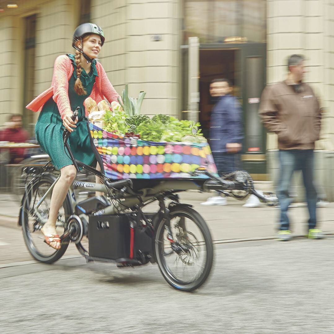 Woman riding a Hase Pino e-bike with a cargo bag full of groceries